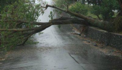 Furtuna și ploaia au făcut ravagii în nordul țării