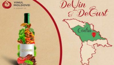 """Festivalul """"DeVin&DeGust"""": ce trebuie să știi despre vinurile produse în regiunea cu indicație geografică protejată """"Codru""""?"""