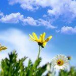 Foto: Meteorologii anunță pentru astăzi vreme frumoasă și însorită