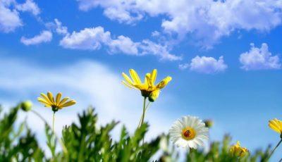 Meteorologii anunță pentru astăzi vreme frumoasă și însorită