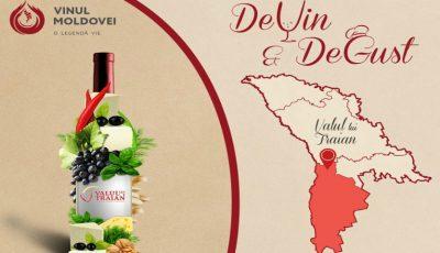 """Festivalul ,,DeVin&DeGust"""": ce trebuie să știi despre vinurile produse în regiunea cu indicație geografică protejată """"Valul lui Traian""""?"""
