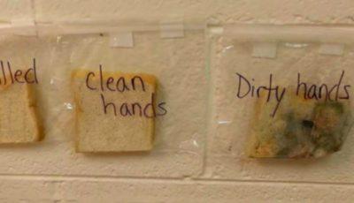 Experimentul cu 3 felii de pâine: cum a reușit o profesoară să-i convingă pe elevii săi să-și spele mâinile în mod regulat