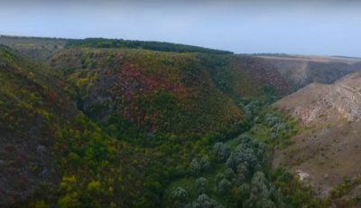 Video! MAI a publicat imaginile făcute cu drona din timpul căutării tinerei dispărute la Țîpova
