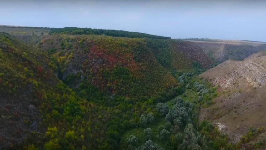 Foto: Video! MAI a publicat imaginile făcute cu drona din timpul căutării tinerei dispărute la Țîpova