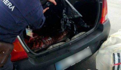 Mare atenție, consumatori! 56 kg de mezeluri de proveniență dubioasă urmau să ajungă în Moldova din Ucraina