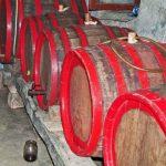 Foto: Un bărbat din raionul Cahul a murit intoxicat cu gaze rezultate din fermentarea vinului