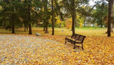 Meteorologii anunță o ușoară încălzire a vremii