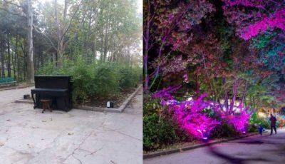 Pe Aleea Colorată din parcul Valea Trandafirilor va fi instalat un pian pentru vizitatori