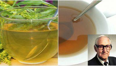 Ceaiul pentru rinichi recomandat de terapeutul austriac Rudolf Breuss