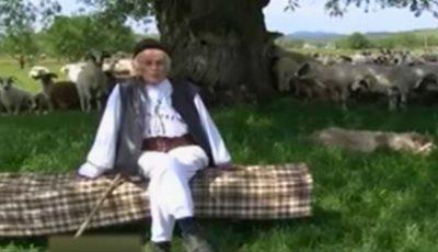 Povestea ciobanului care a împlinit 100 de ani: are o mie de oi și merge în fiecare zi câte 30 de km pe jos