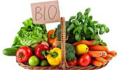 Să deslușim împreună diferența dintre Organic, Eco, Bio și Natural