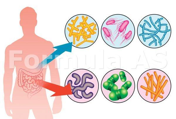 Șase remedii cum să-ți refaci flora intestinală | sanchi.ro