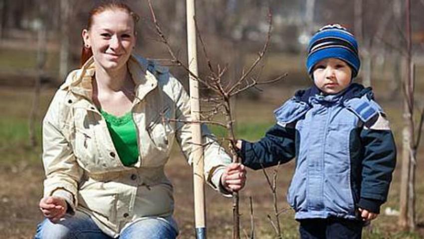 Foto: Mâine, în Moldova se vor sădi copaci
