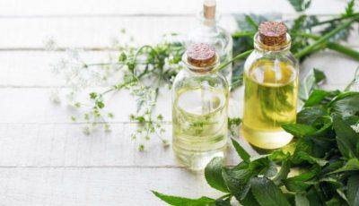 Tipurile de ulei esențial și utilitatea lor