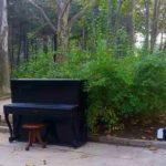 Foto: Pianul din parcul Valea Trandafirilor a dispărut!