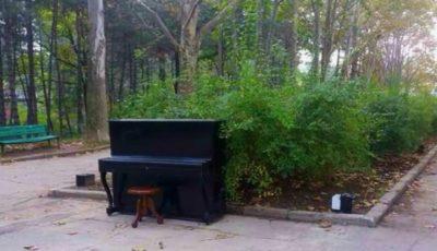 Pianul din parcul Valea Trandafirilor a dispărut!