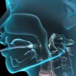 Foto: Totul despre endoscopie