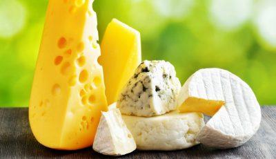 Brânzeturile cu rol de antibiotic natural