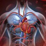 Foto: Curiozități uimitoare despre corpul uman: omul poate supraviețui fără 5 organe