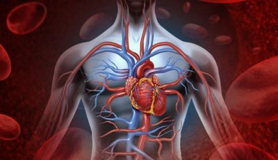 Curiozități uimitoare despre corpul uman: omul poate supraviețui fără 5 organe