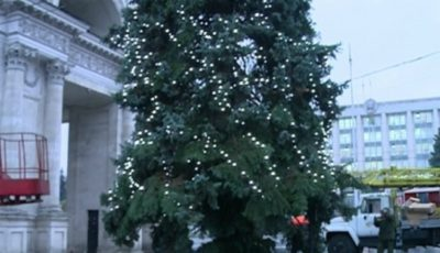 Pomul de Crăciun nu a ajuns încă la Chișinău