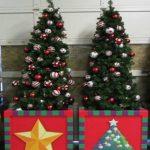 Foto: Noutate! Pomii de Crăciun pot fi luați în chirie