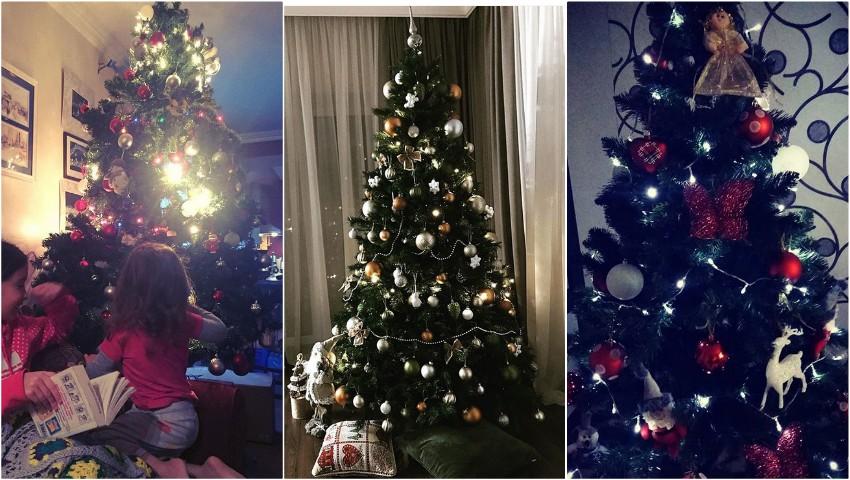 Vedetele de acasă au împodobit bradul de Crăciun! Vezi cum arată
