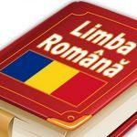 Foto: Aviz pozitiv limbii române în Constituție din partea Guvernului