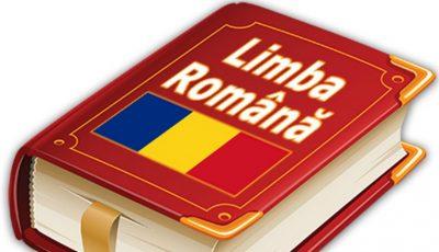 Aviz pozitiv limbii române în Constituție din partea Guvernului