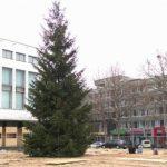 Foto: Astăzi, va fi inaugurat Pomul de Crăciun al Guvernului. Traficul rutier pe strada 31 august va fi sistat