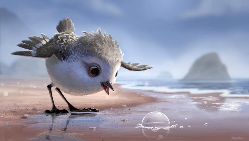 """Foto: Motivul pentru care merită să vizionezi ,,Piper"""", unul dintre cele mai bune filme de animație realizat de Pixar!"""