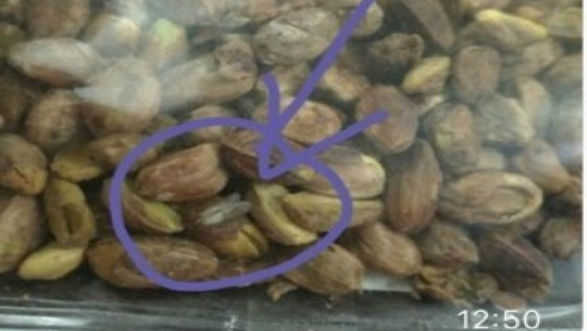Foto: Arahide cu viermi pe rafturile unui magazin din Capitală