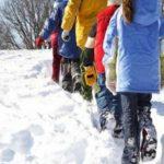 Foto: Mai multe școli și grădinițe din țară au fost închise din cauza vremii
