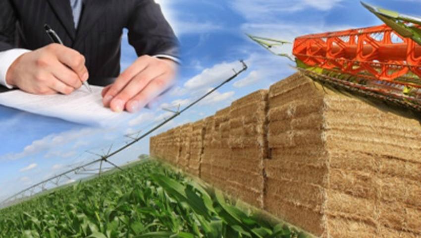 Foto: Veste bună pentru agricultori! Termenul contractului de arendă a terenurilor agricole ar putea fi majorat