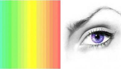 Testul care te ajută să descoperi câte culori percepi și care este nuanța ta preferată