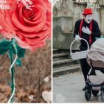 """Foto: O roză faimoasă a apărut în parcul ,,Valea Trandafirilor"""" din Capitală! Poze"""