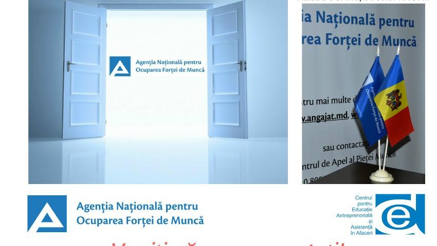 """Foto: """"Ziua Ușilor Deshise"""" la Agenția Națională pentru Ocuparea Forței de Muncă și structurile sale teritoriale"""
