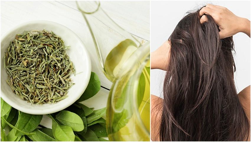 Foto: Ceaiul verde te ajută să scapi de mătreață