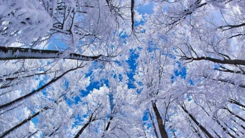 Foto: Ger în toată țara. Temperaturile vor coborî până la -18 grade!