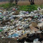 Foto: Video!!! Gemeni nou-născuți aruncați la gunoi