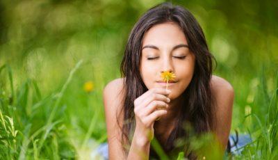 Mirosurile care încep să dispară de pe fața Pământului