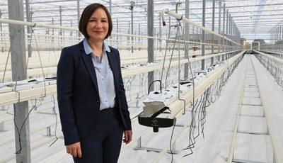 O femeie din Bălți este proprietara celei mai moderne sere din România