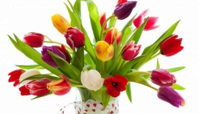 Felicitări și mesaje de 8 Martie!