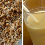 Foto: Remediu miraculos pentru renașterea organismului – grâu încolțit cu miere