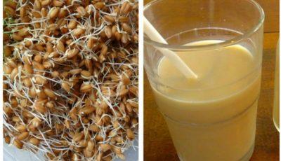 Remediu miraculos pentru renașterea organismului – grâu încolțit cu miere