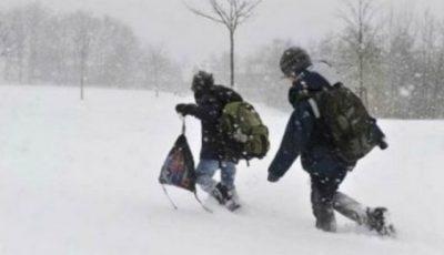 Peste 100 de elevi din trei raioane nu au ajuns astăzi la școală din cauza vremii