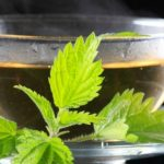 Foto: Beneficiile ceaiului de urzică