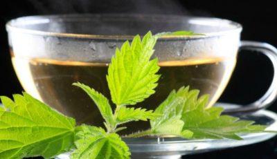 Beneficiile ceaiului de urzică