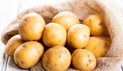 Peste 1.000 de tone de cartofi infestați au fost opriți în portul Constanţa