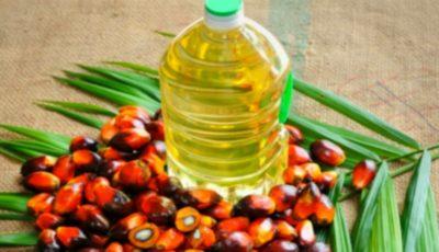 Islanda a interzis comercializarea oricărui produs care conține ulei de palmier